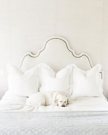 White upholstered headboard and white bedding