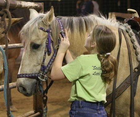 114 Best Images About Horse Activities For Kids On