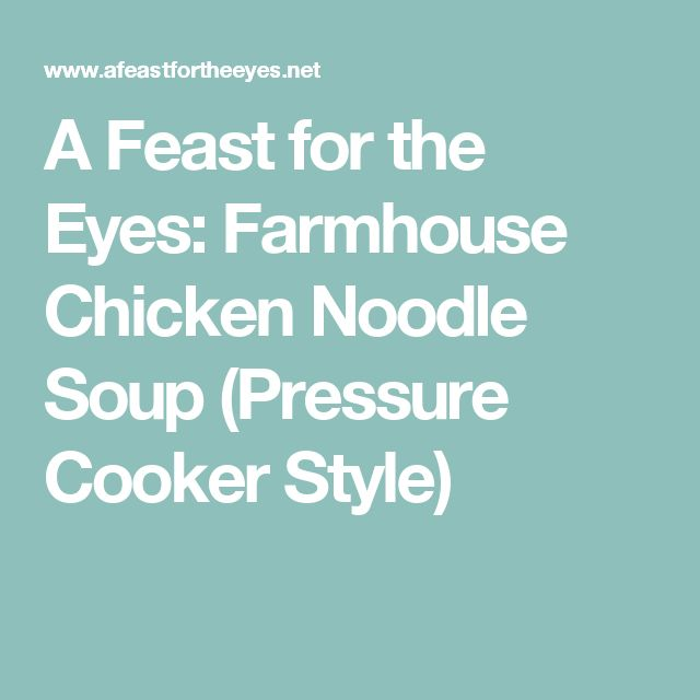 A Feast for the Eyes: Farmhouse Chicken Noodle Soup (Pressure Cooker Style)