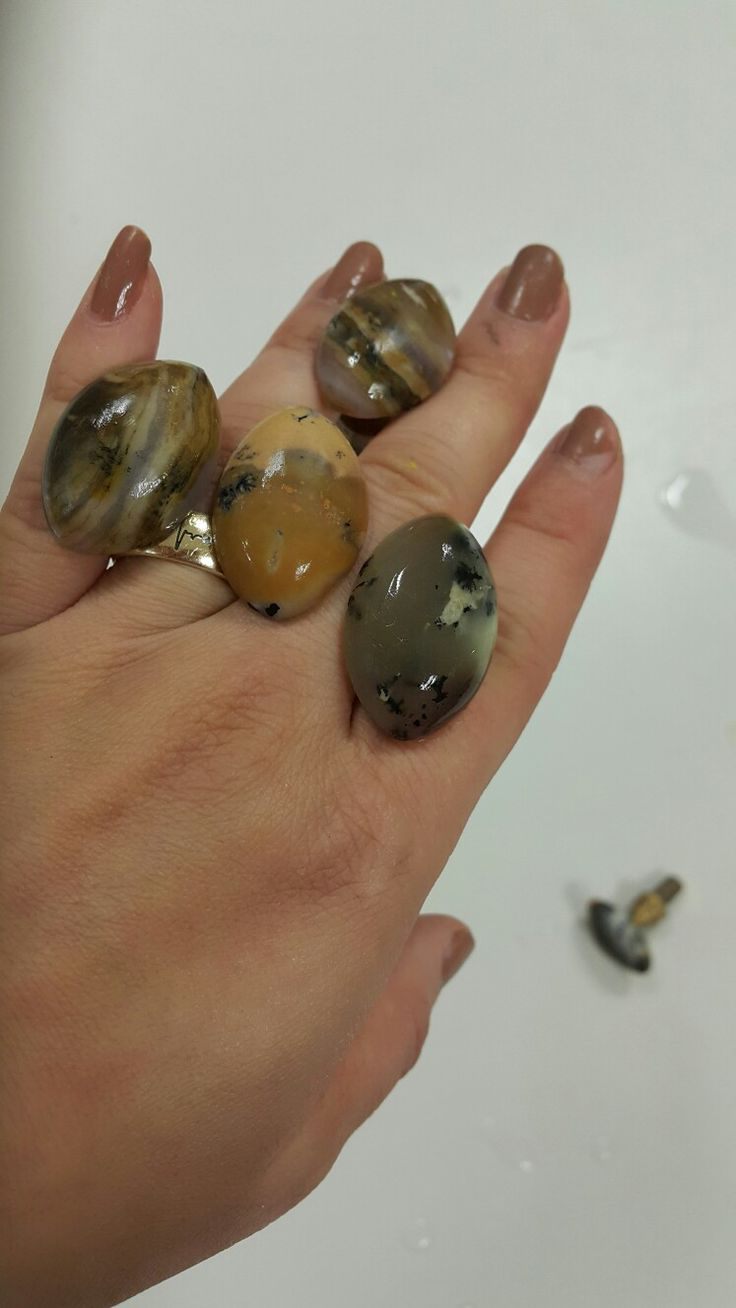 Turkish Petrified wood and dendritic agate cabs