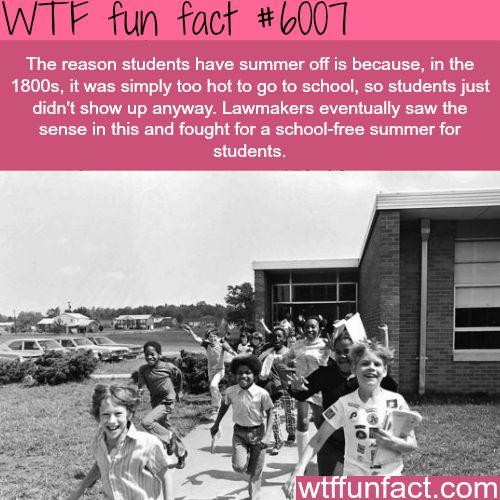 Why students don't have summer school - WTF fun facts
