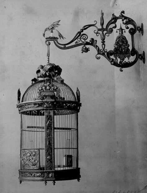 Une vieille cage à oiseau avec une rose à l'intérieur