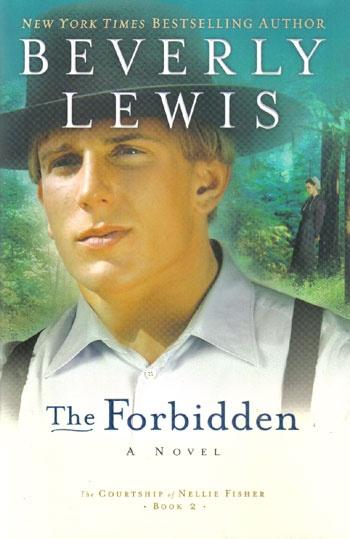 I enjoy reading books by Beverly LewisReading Book