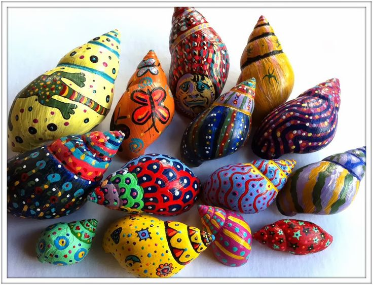Painted  Snail Shells in Hawaii