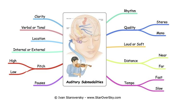 Auditory Submodalities