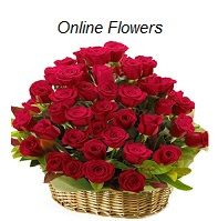 http://niceflowerwyz.wix.com/flower  Best Way To Have Flowers Delivered,  Flowerwyz,Flower Wyz,Flowerwyz Flower Delivery,Flower Delivery,Flowers Online,Send Flowers,Flowers Delivery,Cheap Flowers,Cheap Flower Delivery,Online Flowers,Sending Flowers  When you contrast blossom delivery companies, several of the essential facets to consider are the costs, delivery charges, shipment areas, as well as message service.