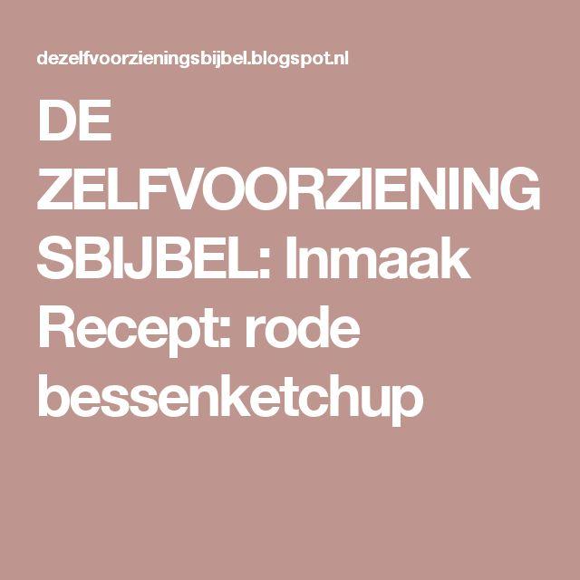 DE ZELFVOORZIENINGSBIJBEL: Inmaak Recept: rode bessenketchup
