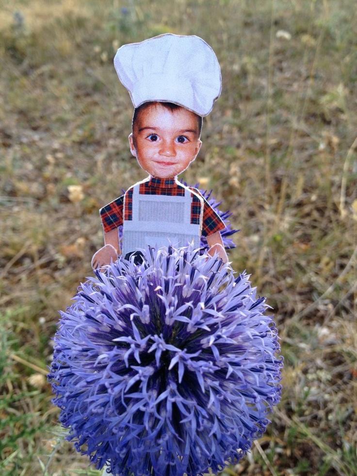 L'erbario spinoso di Little Cook