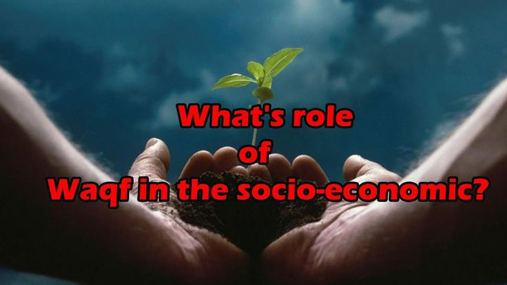 what is waqf?  What's role of Waqf in the socio-economic?