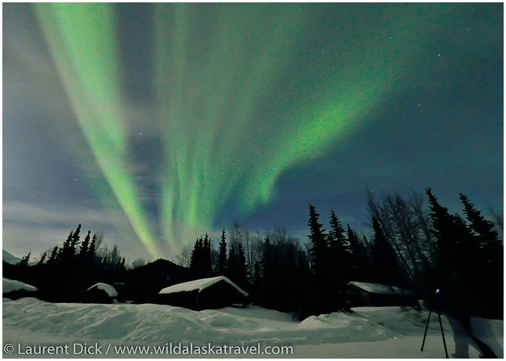 WILD ALASKA TRAVEL Alaska Northern Lights Tour - WILD ALASKA TRAVEL