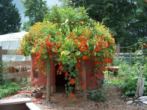 Um jardim para cuidar: CASINHAS DE BRINCAR