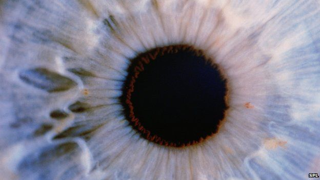 Cells from dead peoples eyes are being used to allow people to see again.