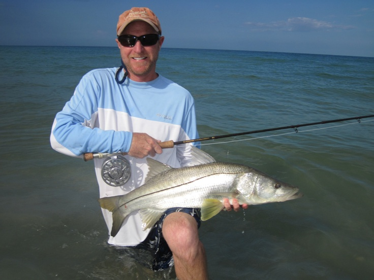 54 best snook images on pinterest fishing fly fishing for Surf fly fishing