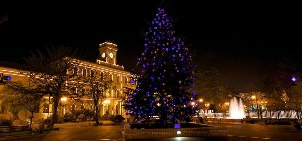 Panoramica della Piazza del Comune di Cattolica e Albero di Natale