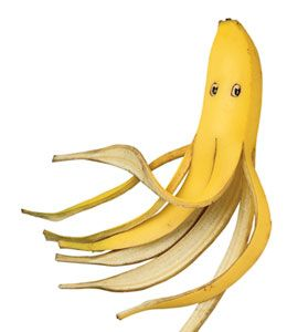 Banana Octopuses