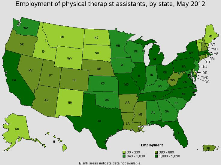 Physical Therapist Assistants D. That's what helps me get