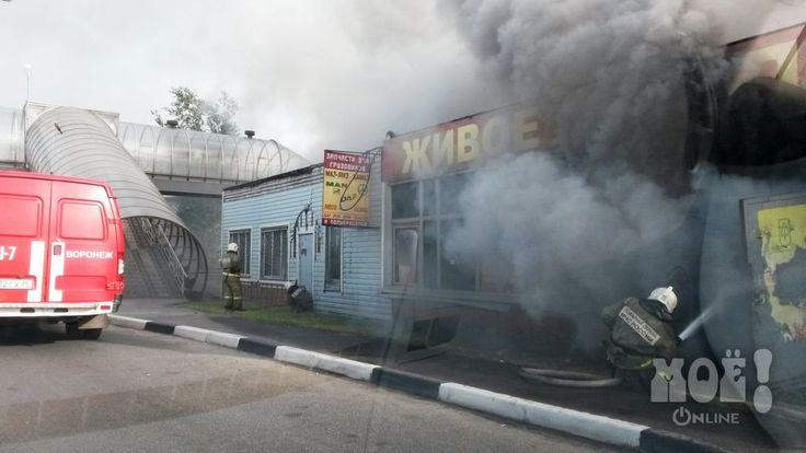 На выезде из Воронежа горел крупный торговый павильон / Away from Voronezh burned large shopping pavilion