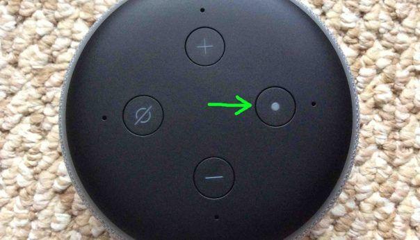 Alexa Echo Dot Reset Instructions Alexa Echo Echo Dot Alexa Dot