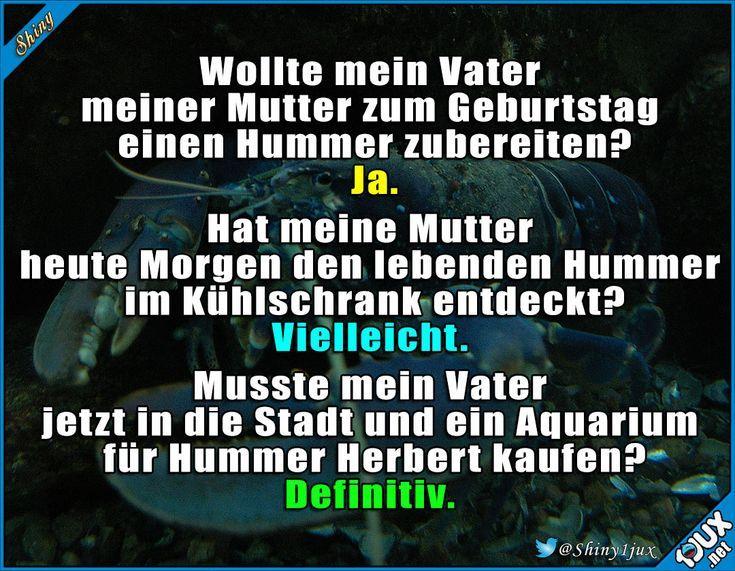 So schnell hat man ein neues Haustier #Hummer #lustigefails #Sprüche #Humor #lu