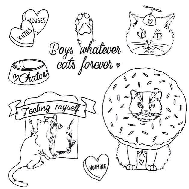 Boys whatever, cats forever ✌️ @baudelon #creativeweekend #cats #flash chloeruperto.com