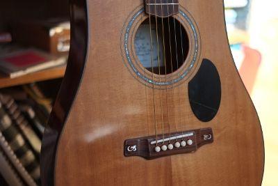Parlour guitar detail.
