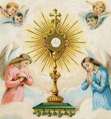 2015年6月のブログ記事一覧-Credidimus Caritati 私たちは天主の愛を信じた