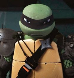 How much of the tmnt cartoon am I missing?!? I haven't been able to watch it!! What's with Dark Leo?!