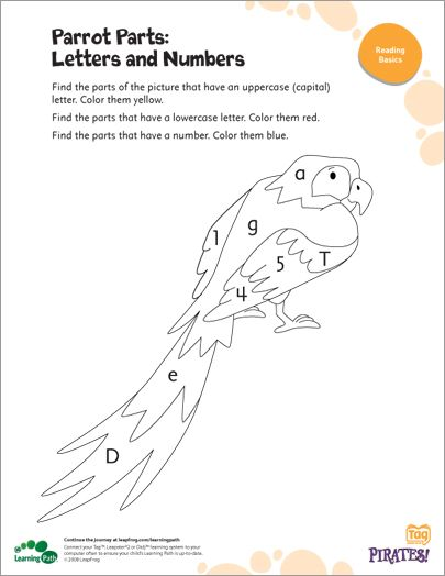 Parrot Parts: Letters and Numbers- Here's a coloring page that will help your child practice distinguishing uppercase and lowercase letters, as well as tell the difference between letters and numbers.