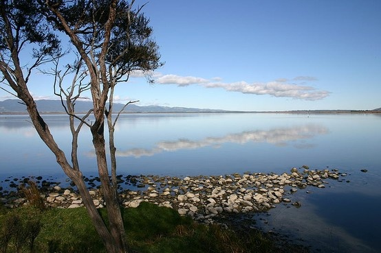 Lake Wairarapa, east of Wellington, NZ // the southern tip of the North Island