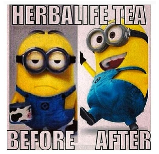 Have you drank your Herbalife tea today?! Lol