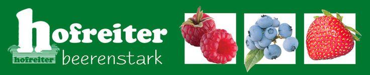 BeerenCafé - hofreiter - Erdbeeren Selbstpflücken München Beeren