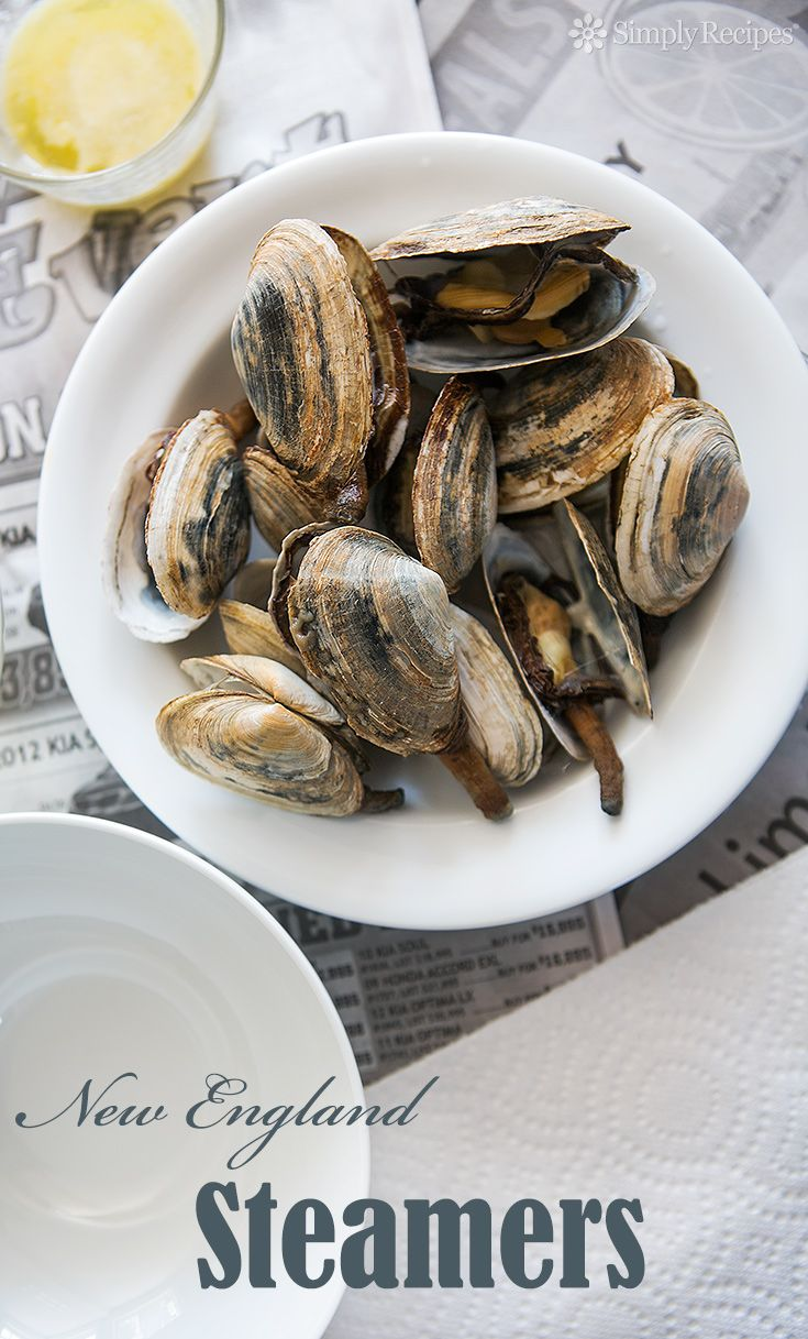 New England Steamers ~ How to make steamed soft shell clams, otherwise known as steamers, a specialty of New England. ~ SimplyRecipes.com