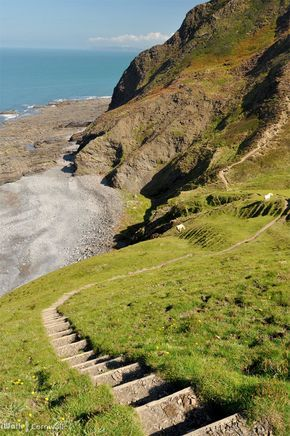 Steps to Scrade Beach near Dizzard, Cornwall