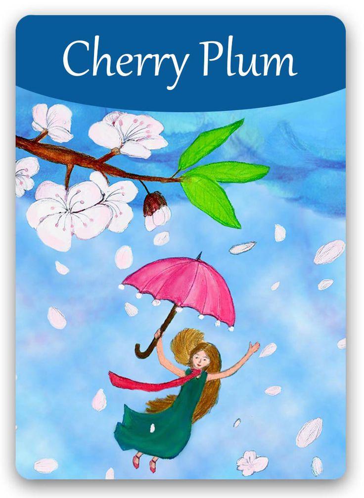 Cherry plum - Cerasifera / Miedo a perder el control, histeria. Bach: Miedo a que la mente este sobre-tensionada, miedo de perder la razón, de hacer cosas terribles y temibles, no deseadas y a sabiendas de que son malas, sin embargo, llega el pensamiento y el impulso de hacerlas.