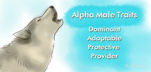how to win the heart of an alpha male