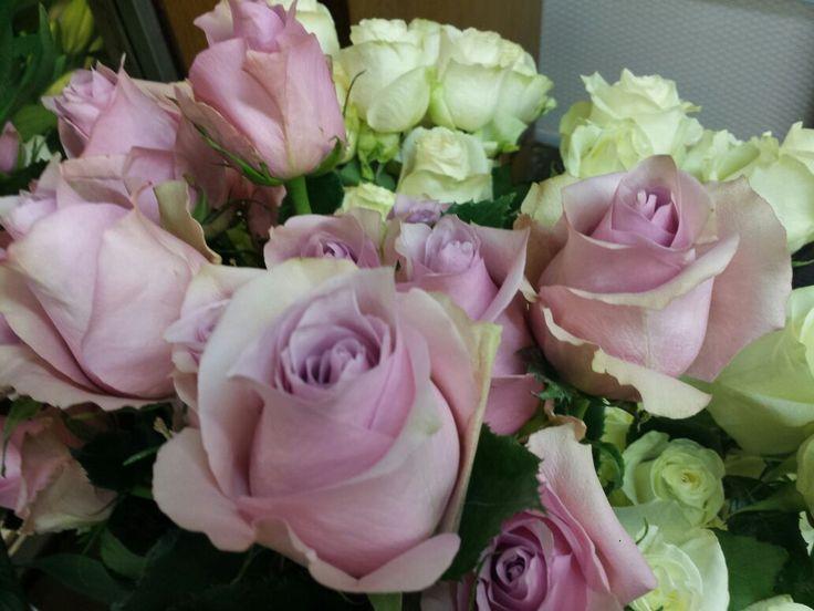 Preparando todas las rosas para San Valentín | Bourguignon Floristas