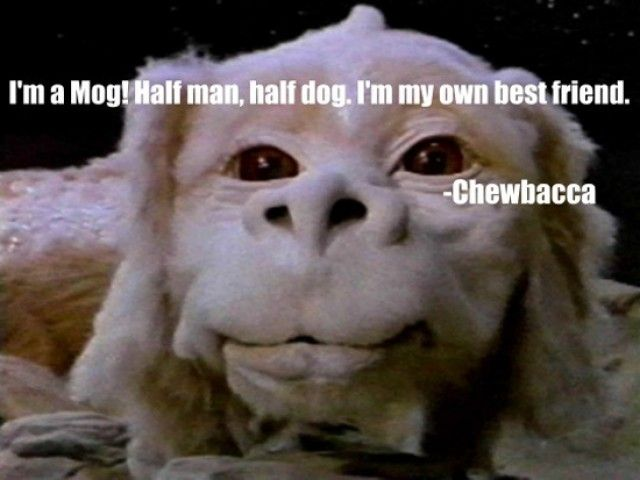 Funny Meme Upload : 46 best funny memes from gadget flow images on pinterest ha ha so