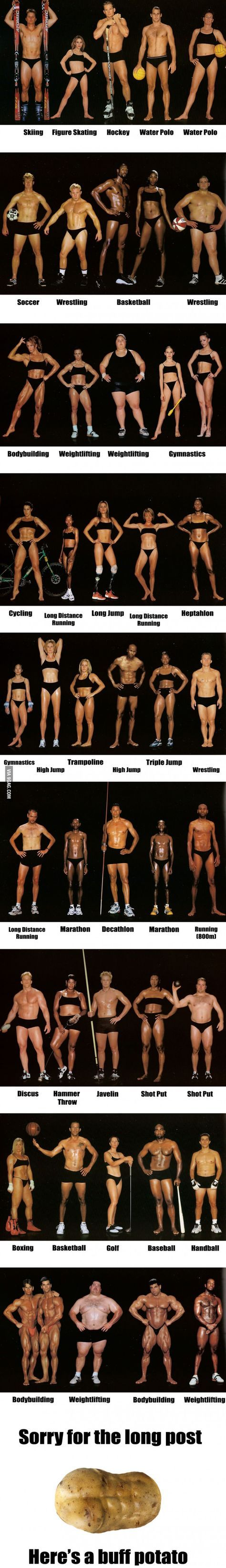 Different types of 'Fit' - the bodies of world class athletes