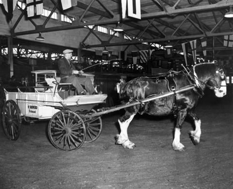 Horse and wagon owned by W. Shepherd of Richmond, B.C. - City of Vancouver Archives