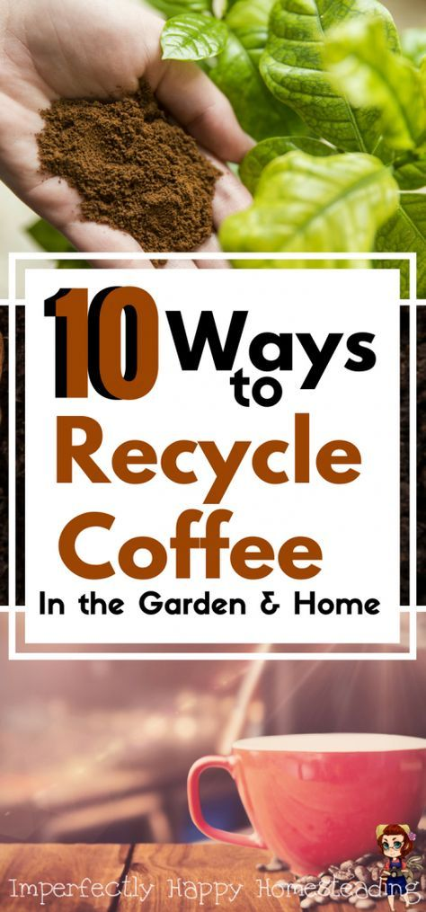 10 Ways to Recycle Coffee in the Garden and on the Homestead.