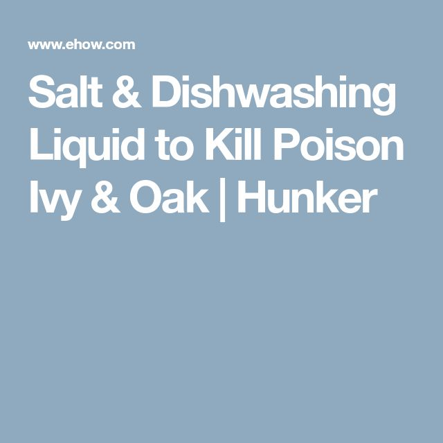 Salt & Dishwashing Liquid to Kill Poison Ivy & Oak | Hunker