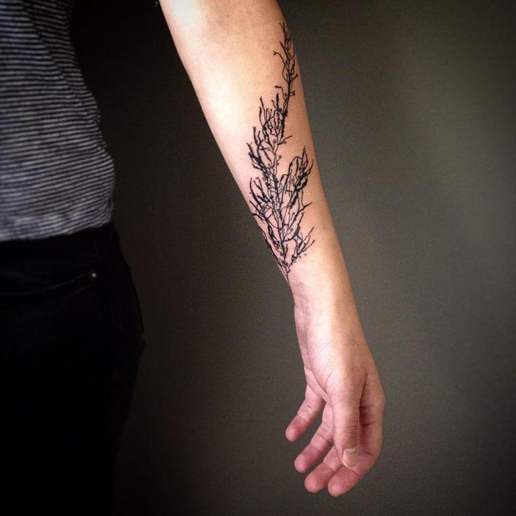 Kerry Burke Tattoos: 15 Best Skull Tattoos Images On Pinterest