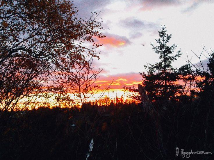 Coucher de soleil au Parc de la chute Montmorency au #Quebec #Canada