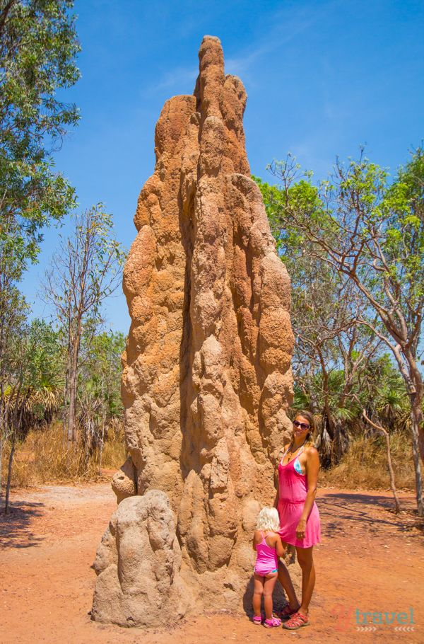 Giant Termite Mound, Litchfield National Park, Northern Territory, Australia
