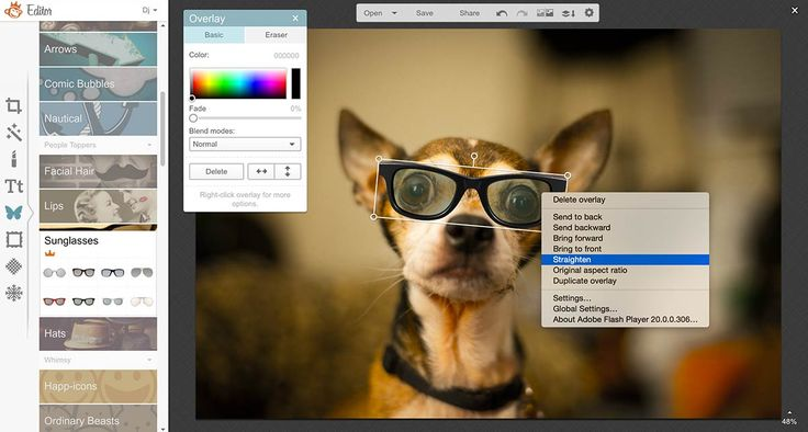 Cool PicMonkey Tips Nobody Knows