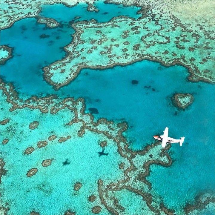 Whitesundays Noemie Bru Noemiebru Photos Et Videos Instagram Instagram Great Barrier Reef Bluewater