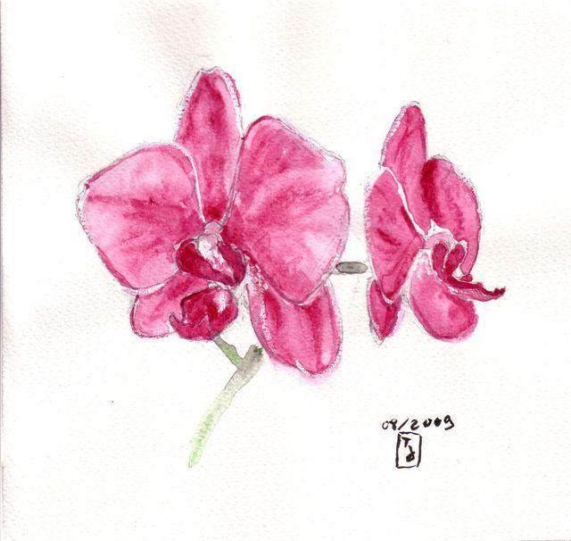 1000 id es sur le th me tatouage d 39 orchid e sur pinterest tatouages designs de tatouage et - Dessin d orchidee ...