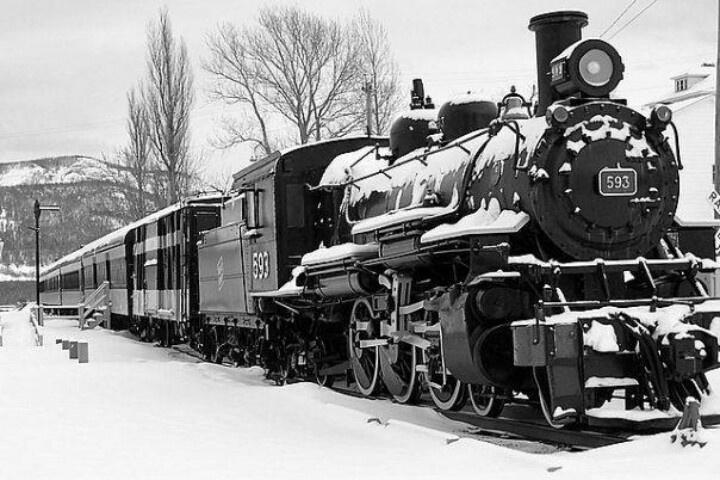 Newfie bullet train