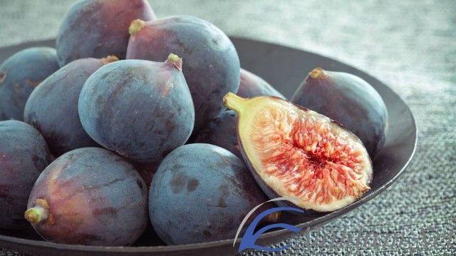 معنى رؤية التين في المنام لابن سيرين ابن سيرين التين التين في الحلم التين في المنام Fig Nutrition Figs Benefits Soy Milk Nutrition