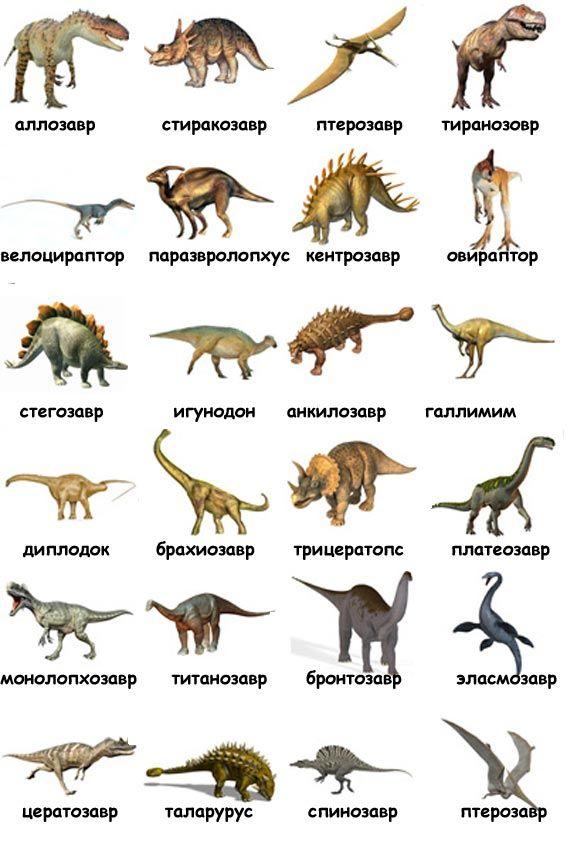 картинки динозавров